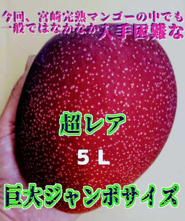FOODISH【宮崎県産】5L 完熟マンゴー 超特大サイズ 2個入 化粧箱付き お中元、ご贈答、家用、プレゼントに!_画像5