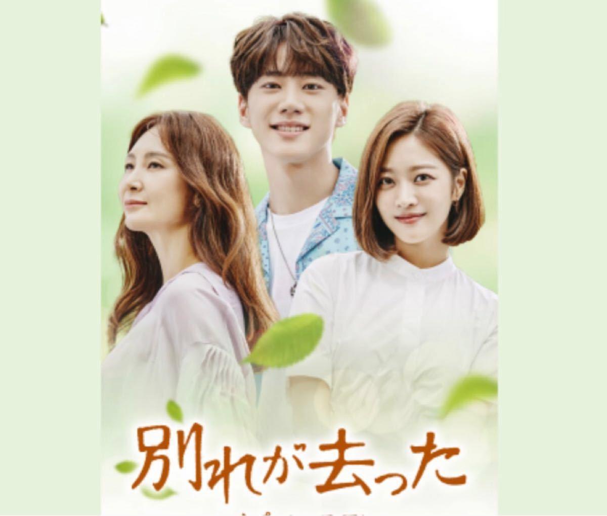 韓国ドラマ 別れが去った ブルーレイ/Blu-ray全話