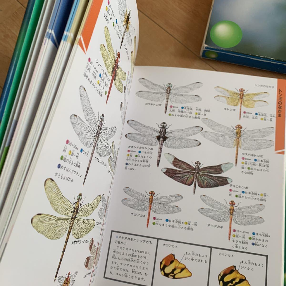 学研の図鑑 昆虫 ケース付き