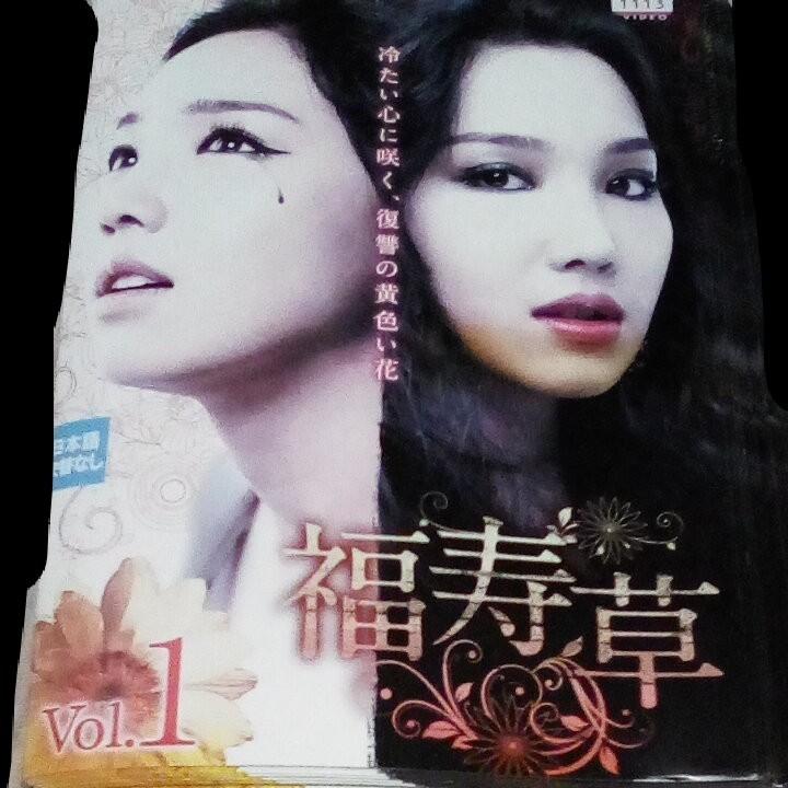 韓国ドラマ DVD  レンタル落ち  ケースなし  福寿草 ジャケットとディスク36枚 全108話