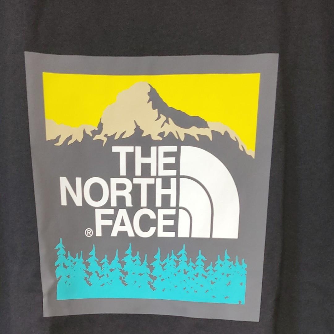 THE NORTH FACE ノースフェイス Tシャツ ロゴTシャツ ザノースフェイス