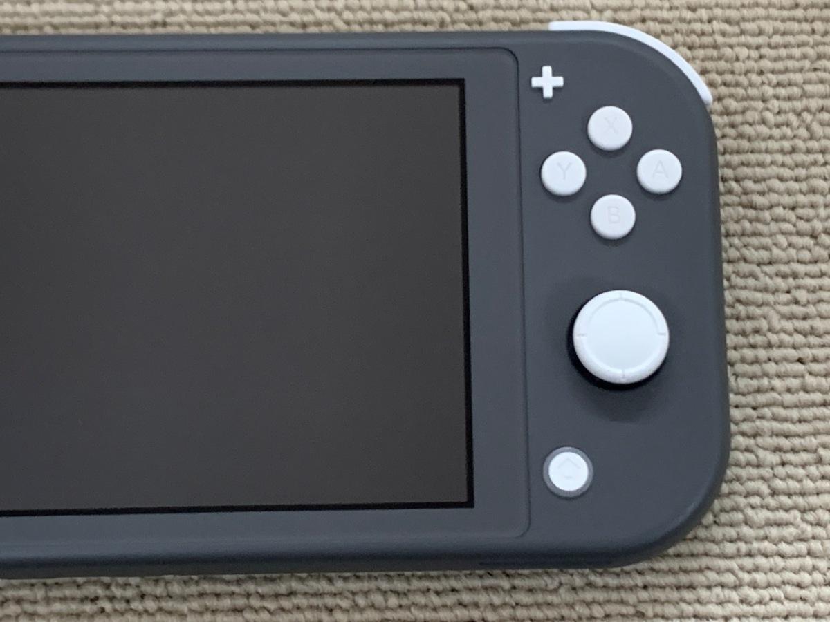 中古品 任天堂 Nintendo Switch Lite 本体 ニンテンドー スイッチ ライト 本体 グレー_画像7
