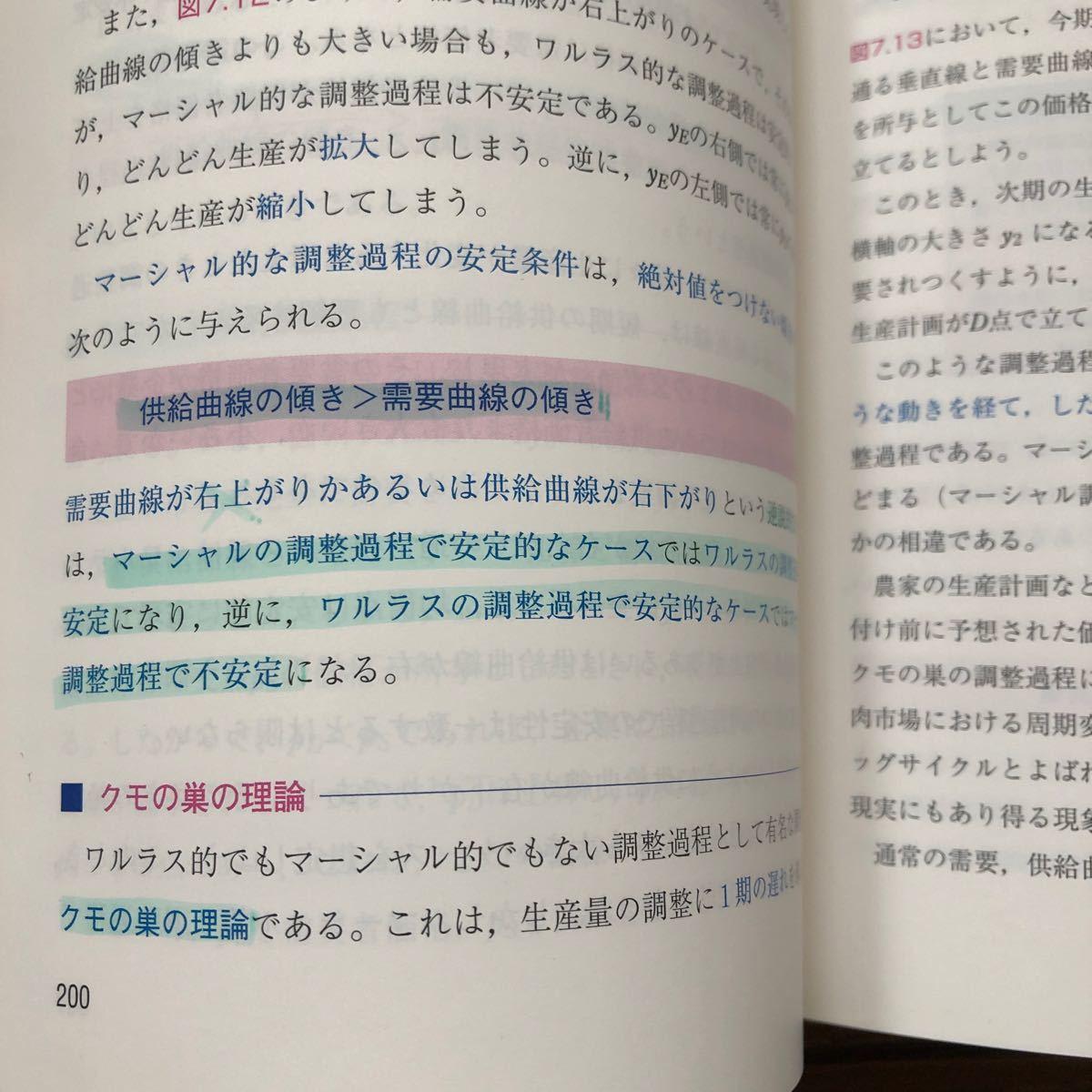 入門ミクロ経済学/井堀利宏 (著者)
