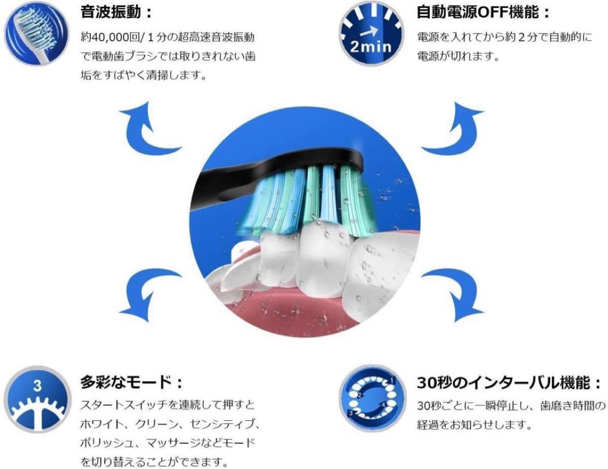 電動歯ブラシ 歯ブラシ ハブラシ Fairywill 音波歯ブラシ 充電式 ブラック ソニック IPX7防水 Model:507