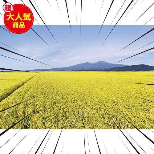 【精米】 山形県産 白米 雪若丸 5kg 令和2年産_画像4