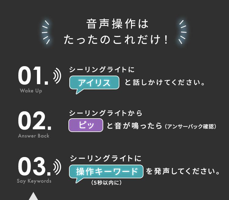 アイリスオーヤマ シーリングライト LED 照明 12畳 音声操作 CL12DL-5.11CFV 調光 調色 メタルサーキット _画像6