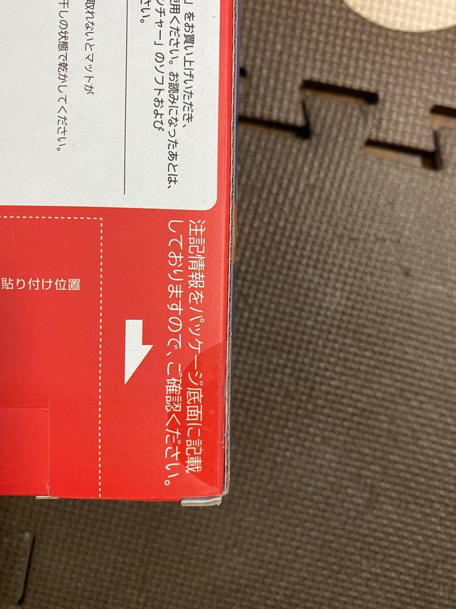 リングフィット アドベンチャー 専用マット