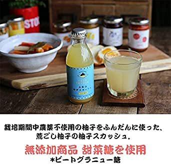 6本 5種MIX 土佐山ジンジャーエール 5種類 飲み比べ MIX ( 土佐山ジンジャーエール 01/02/辛口/マイルド & _画像5