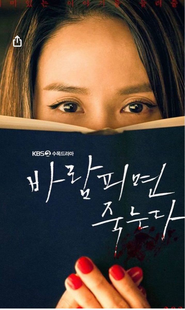 韓国ドラマ 浮気したら死ぬ Blu-ray
