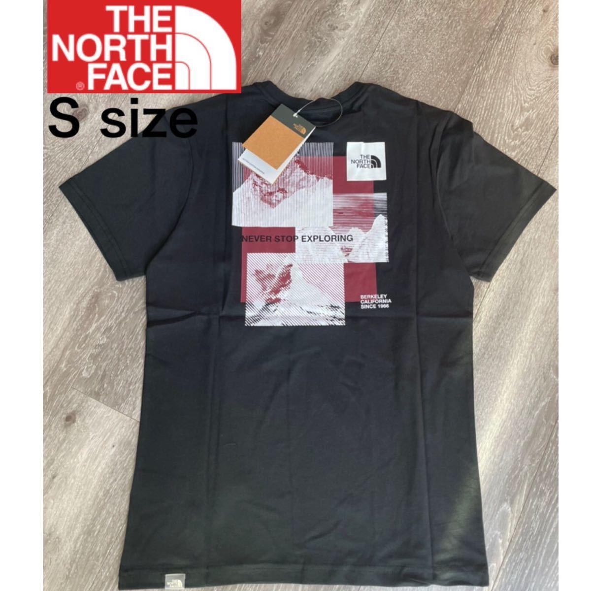 ザ ノースフェイス Tシャツ ストライプミックス S 新品正規品 半袖 tシャツ THE NORTH FACE 海外限定 メンズ