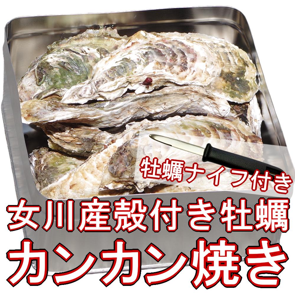 【カンカン焼き】殻付き牡蠣 Lサイズ 2kg(16個前後) 宮城県女川産 牡蠣ナイフ、軍手付き COL-OOK2_13_画像1