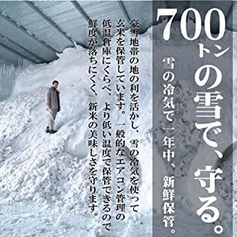 2kg 【精米】新潟県魚沼産 特別栽培米白米 雪蔵氷温熟成 こしひかり 2kg 令和元年産_画像3