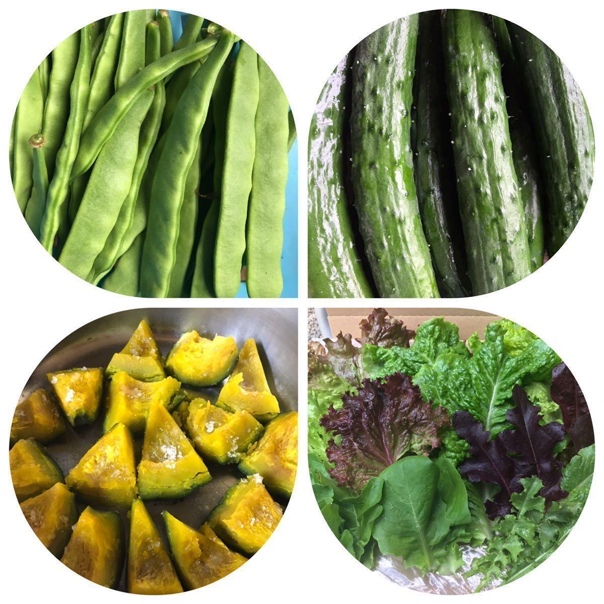 野菜 詰め合わせ 80サイズ お楽しみボックス_画像10