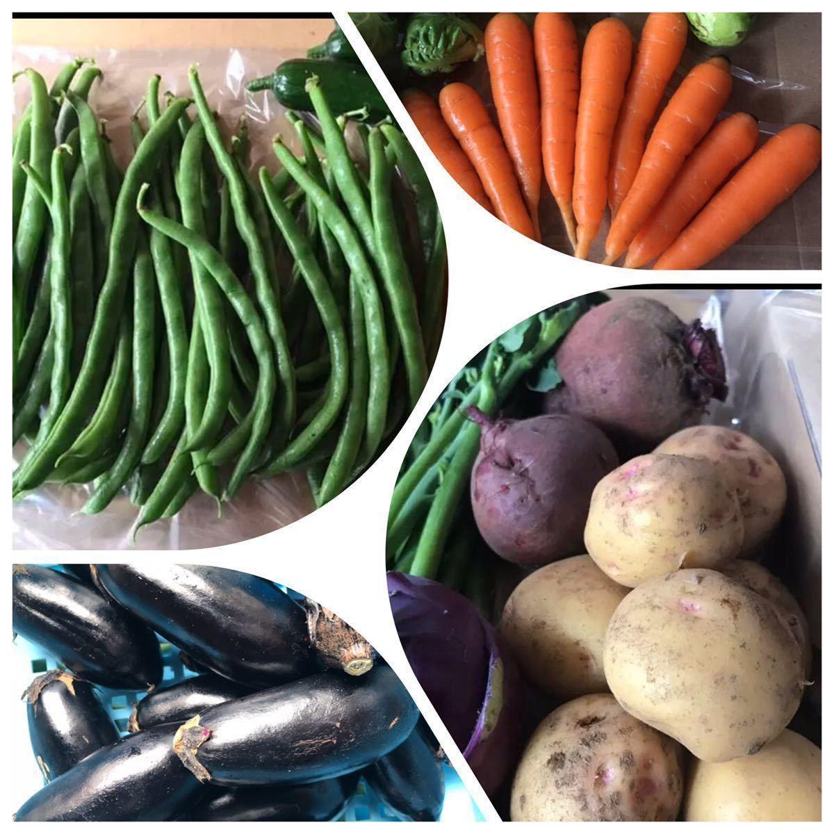 野菜 詰め合わせ 80サイズ お楽しみボックス_画像6