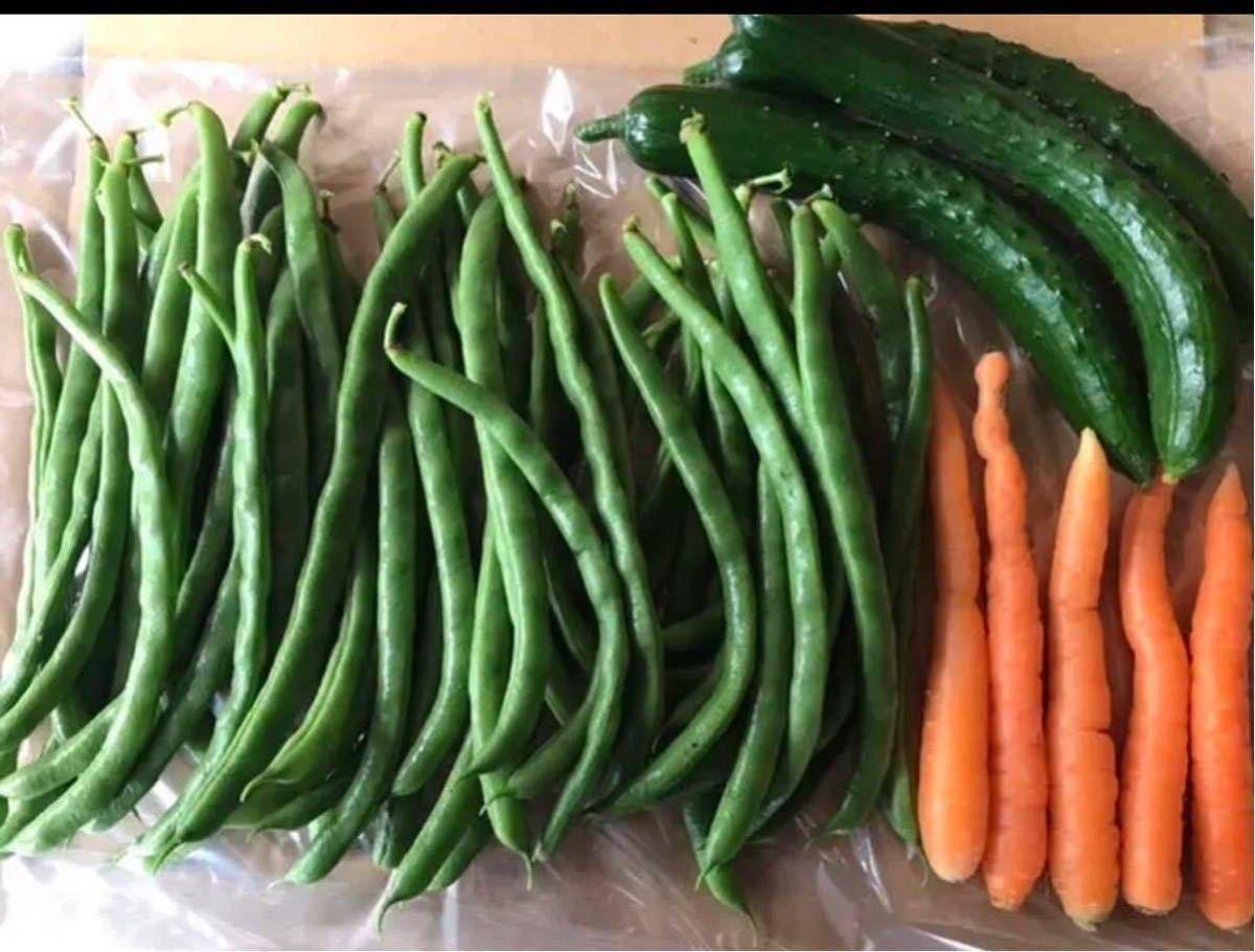 野菜 詰め合わせ 80サイズ お楽しみボックス_画像2