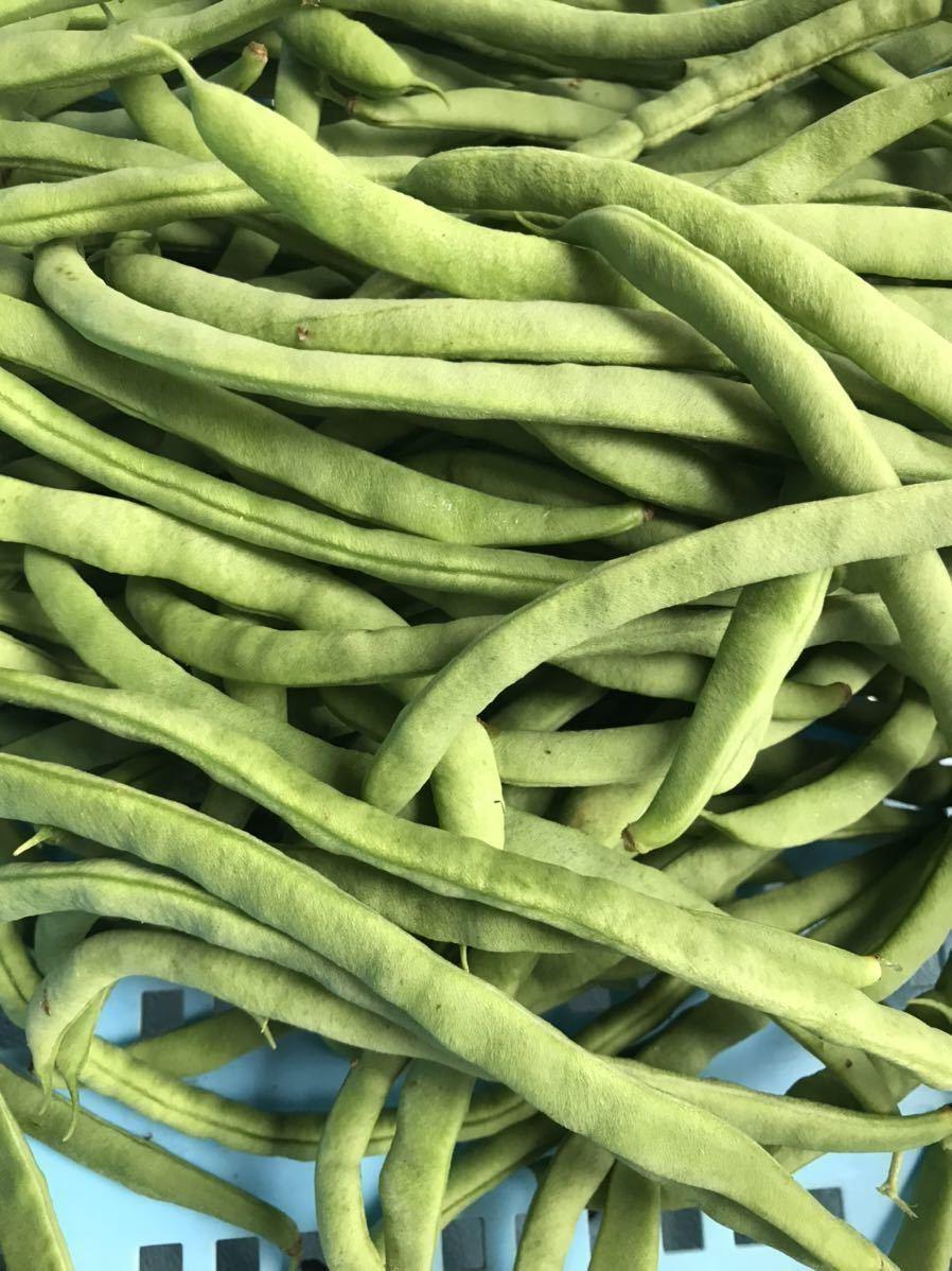 野菜 詰め合わせ 80サイズ お楽しみボックス_画像8