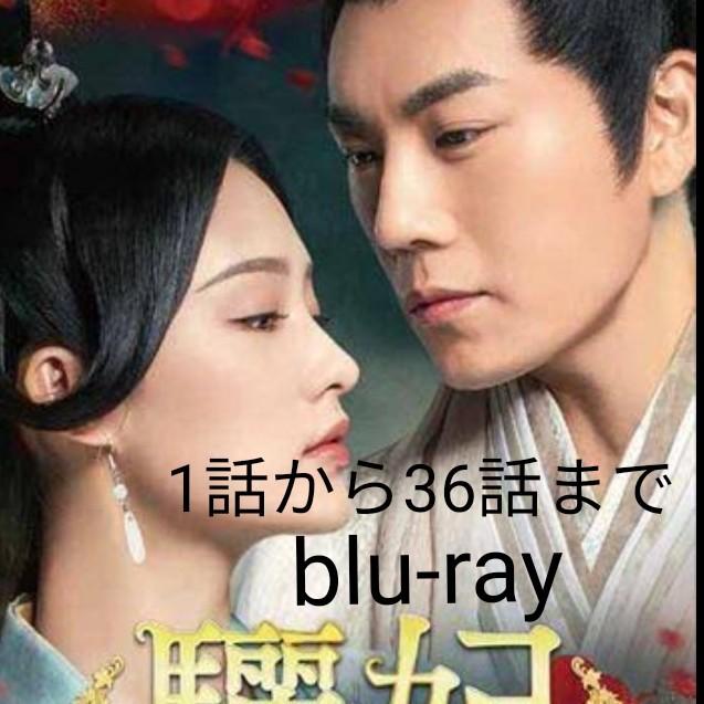 中国ドラマ りひ 途中までblu-ray