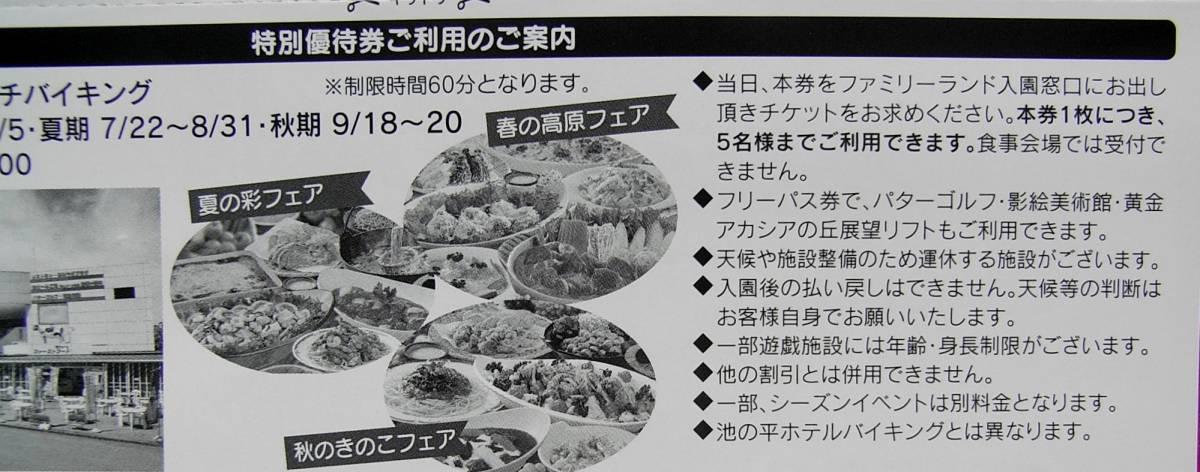 ★長野 信州 ファミリーランド 特別優待券・宿泊券 3種 クーポン _画像6