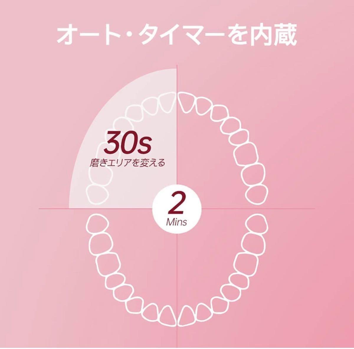 電動歯ブラシ 歯垢除去 ホワイトニング 歯周病予防 音波歯ブラシ 替えブラシ5本 歯ブラシセットUSB充電式 口内ケア 新品未使用