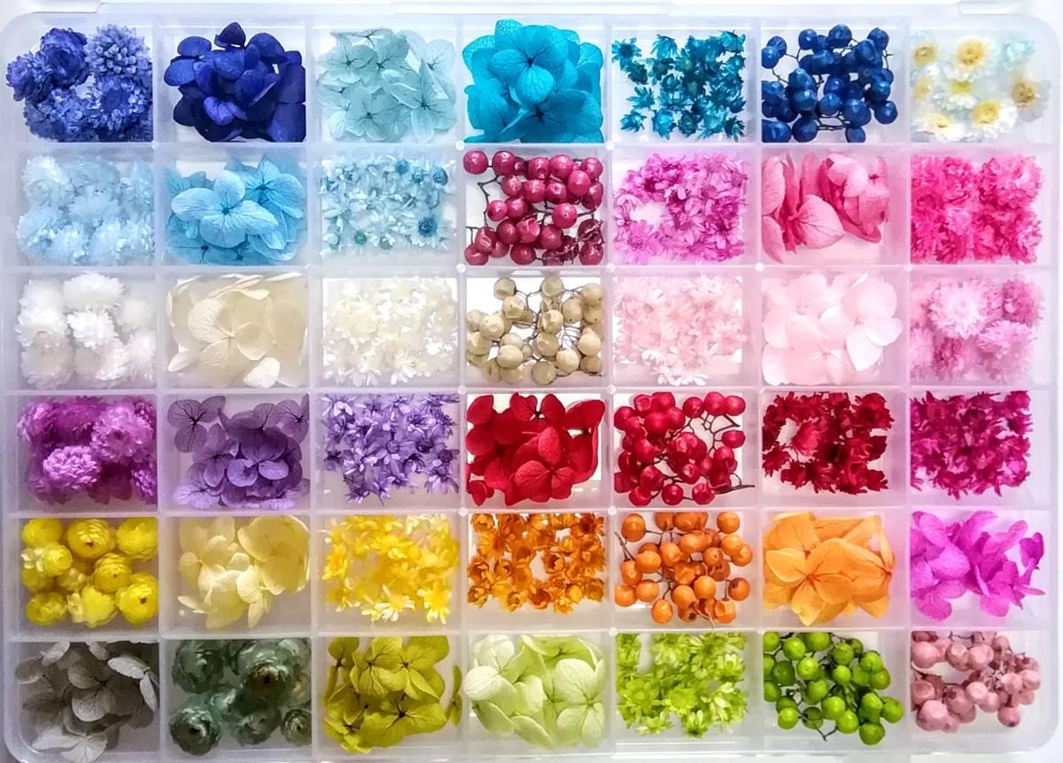 ●送料無料 小さめ花材セットN ケース入り プリザーブド ドライ 封入素材 レジン 3Dハーバリウム ネイル アクセサリー インアリウム 2●_画像1