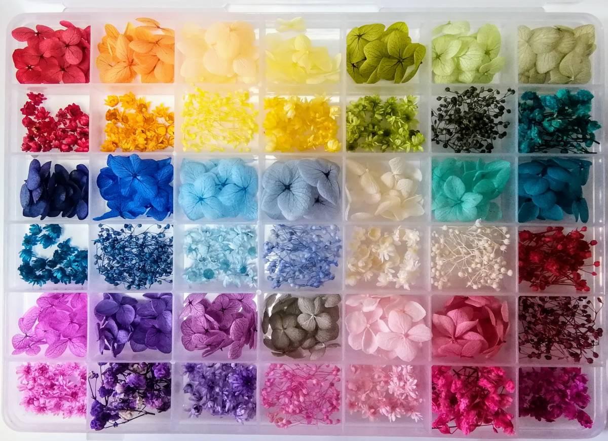 ●送料無料 小さめ花材セット M ケース入り プリザーブド ドライ 封入素材 レジン 3Dハーバリウム ネイル アクセサリー インアリウム ●_画像1