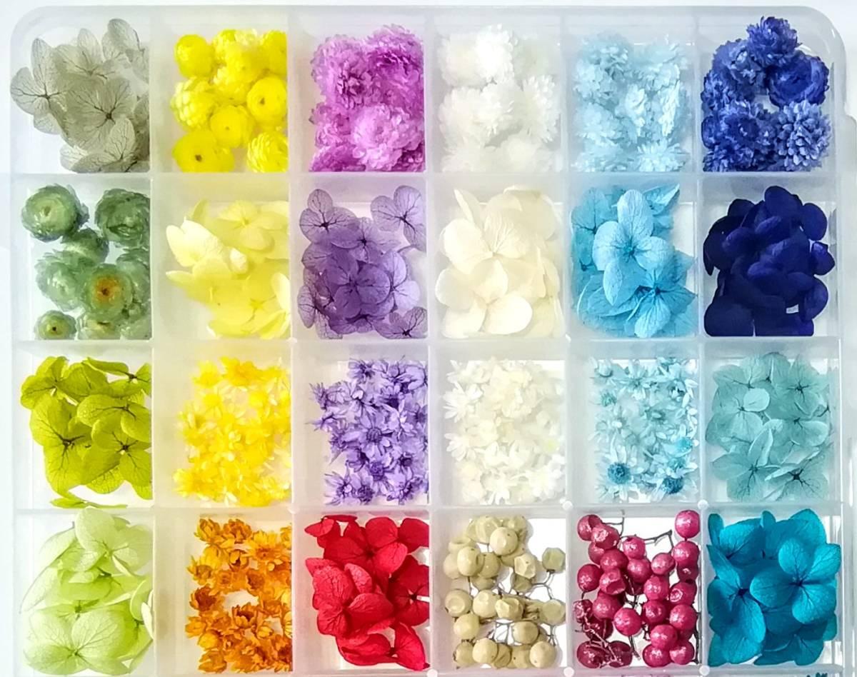 ●送料無料 小さめ花材セットN ケース入り プリザーブド ドライ 封入素材 レジン 3Dハーバリウム ネイル アクセサリー インアリウム 2●_画像2