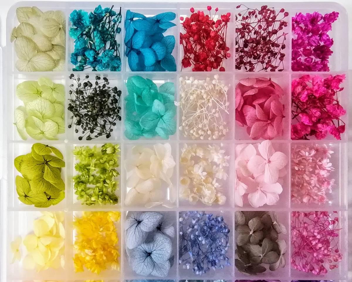●送料無料 小さめ花材セット M ケース入り プリザーブド ドライ 封入素材 レジン 3Dハーバリウム ネイル アクセサリー インアリウム ●_画像3