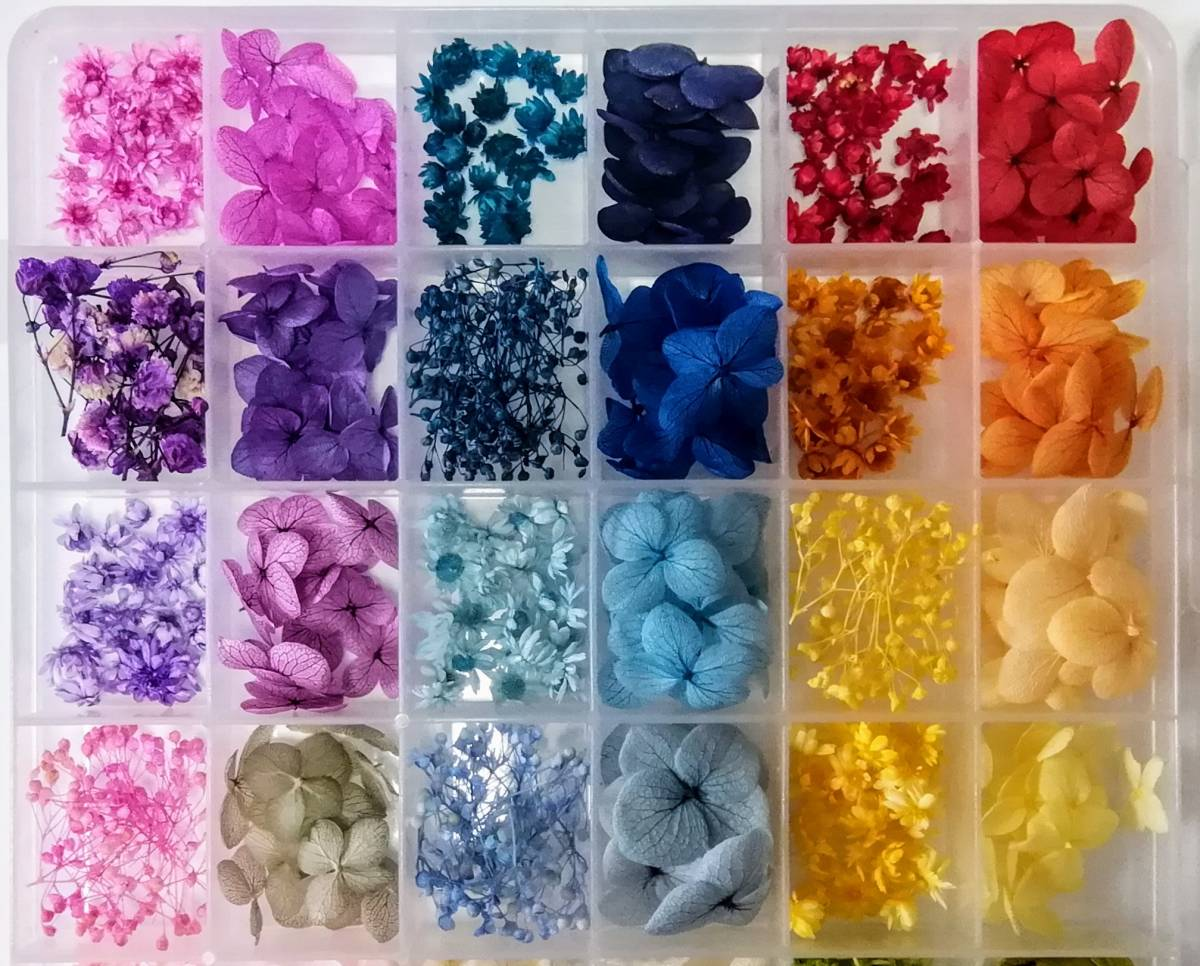 ●送料無料 小さめ花材セット M ケース入り プリザーブド ドライ 封入素材 レジン 3Dハーバリウム ネイル アクセサリー インアリウム ●_画像2