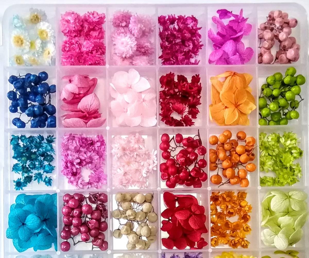 ●送料無料 小さめ花材セットN ケース入り プリザーブド ドライ 封入素材 レジン 3Dハーバリウム ネイル アクセサリー インアリウム 2●_画像3