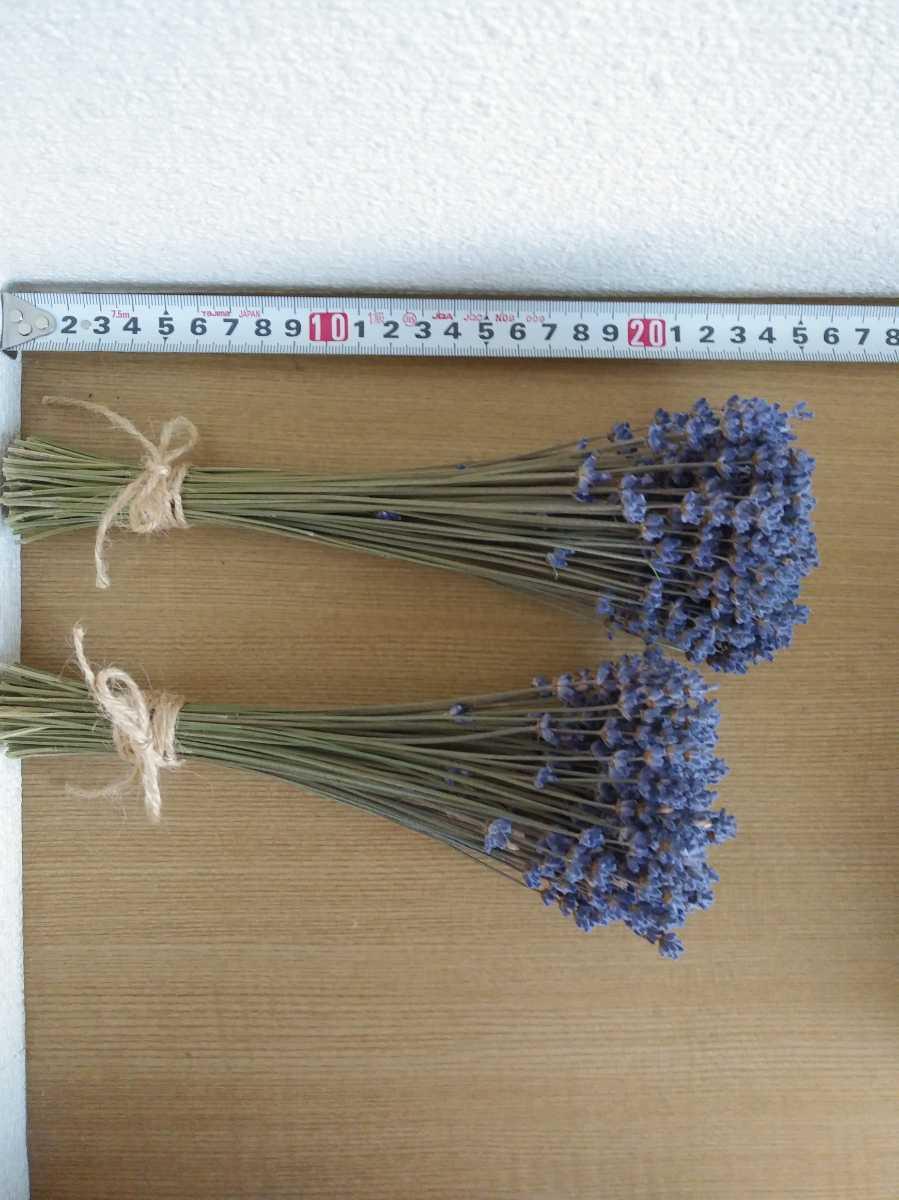 2束セット ラベンダー ドライフラワー ハーバリウム 花材 レジン スワッグ リースなどハンドメイドにも_画像2