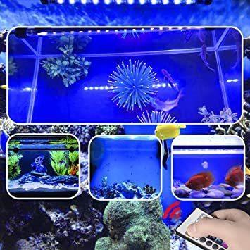 Etelux LED水槽ライト気泡 水中アクアリュムランプ 水槽用照明 装飾 観賞魚 熱帯魚 酸素補給 長寿命 省エネ 水陸両用_画像8