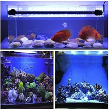 Etelux LED水槽ライト気泡 水中アクアリュムランプ 水槽用照明 装飾 観賞魚 熱帯魚 酸素補給 長寿命 省エネ 水陸両用_画像7