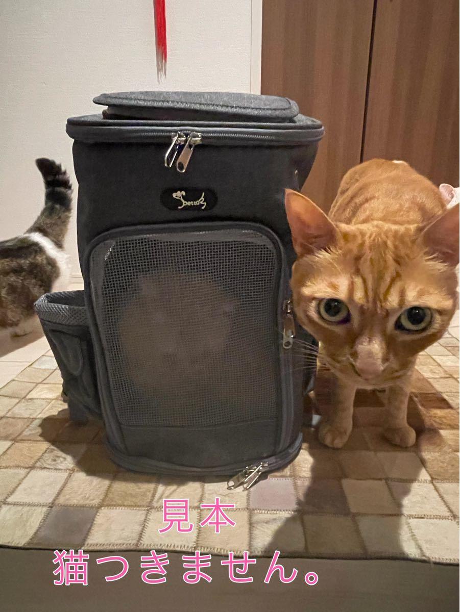 ペットキャリーバッグリュック 犬 猫兼用