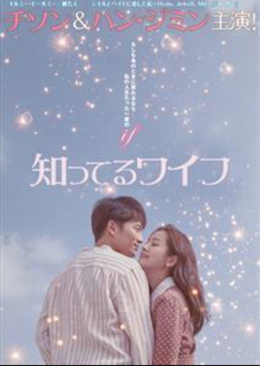 韓国ドラマ Blu-ray 知ってるワイフ チソン ハンジミン 価格交渉不可