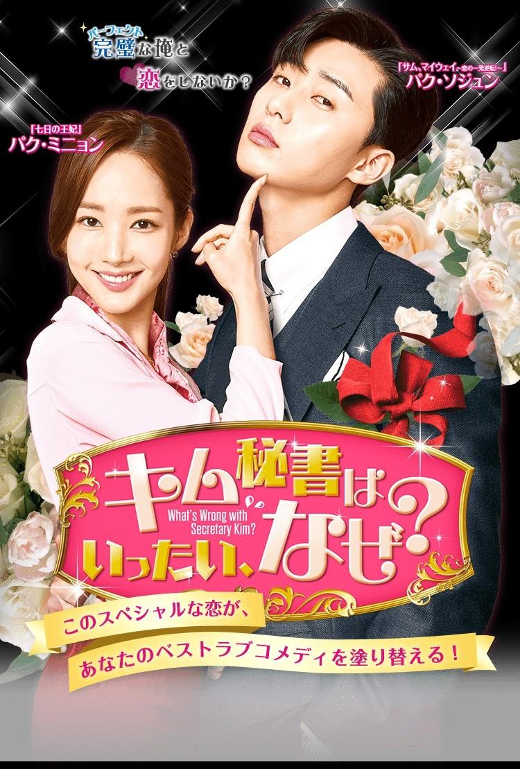 韓国ドラマ ◆キム秘書はいったいなぜ?◆ DVD全話 レーベル印刷有り