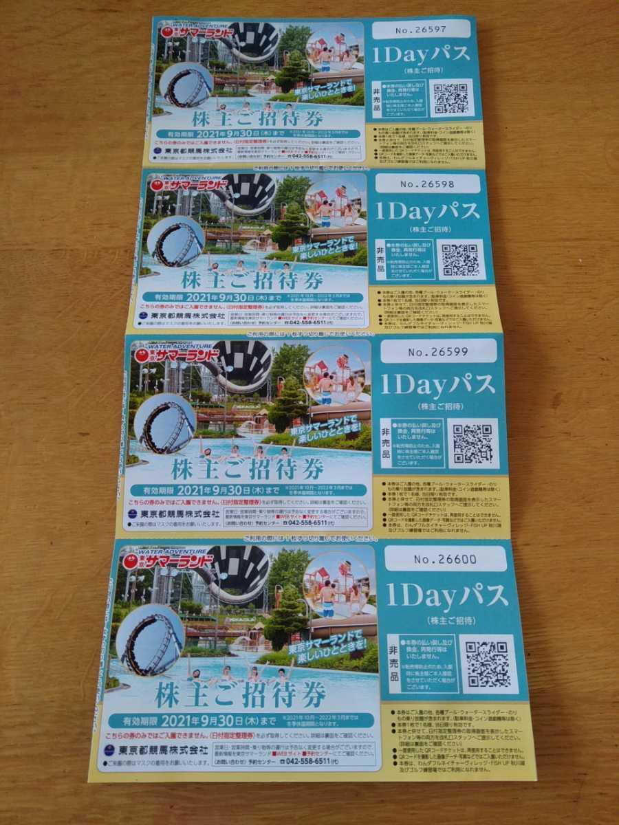 東京サマーランド 株主優待券 ご招待券 入園券 入場券 1dayパス 2枚セット 期限9/30_入札額は2枚分でお願いします