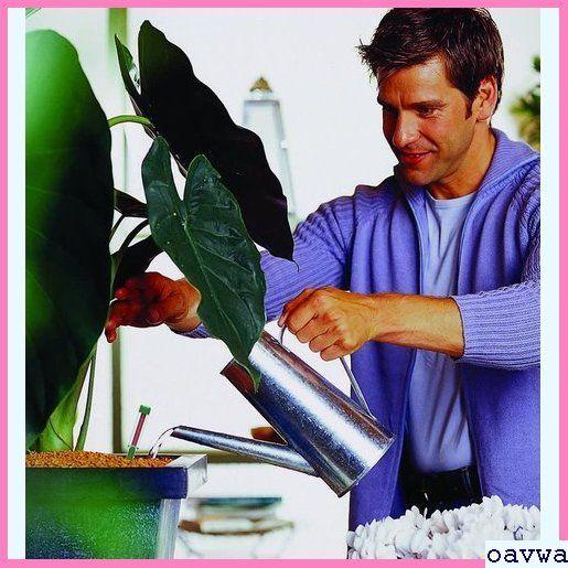 新品★etrga SERAMIS/セラミス/室内観葉植物用液体肥料/200mL/室内園芸/室内ガーデニング/観葉植物 616_画像4