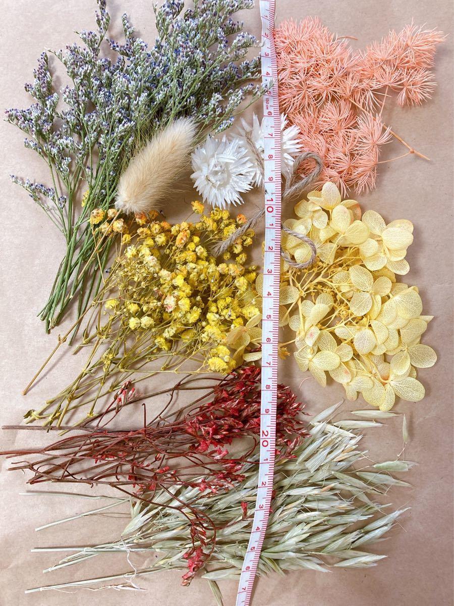 ハーバリウム ハーバリウム花材 アレンジ花材 ドライフラワー花材 スワッグ
