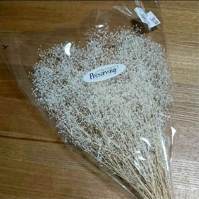 かすみ草 カスミ 草 大地農園 プリザーブドフラワー ハーバリウム花材 ドライフラワー 髪飾り ヘッドドレス はなかんむり リース