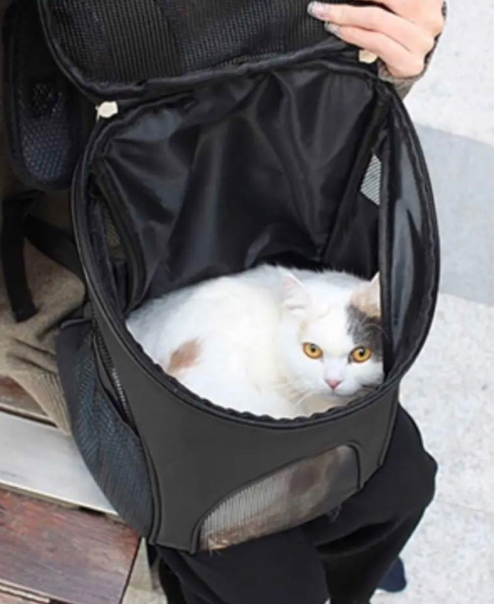ペット用キャリーバッグ 抱っこリュック両用キャリーバッグ ブラック Lサイズ