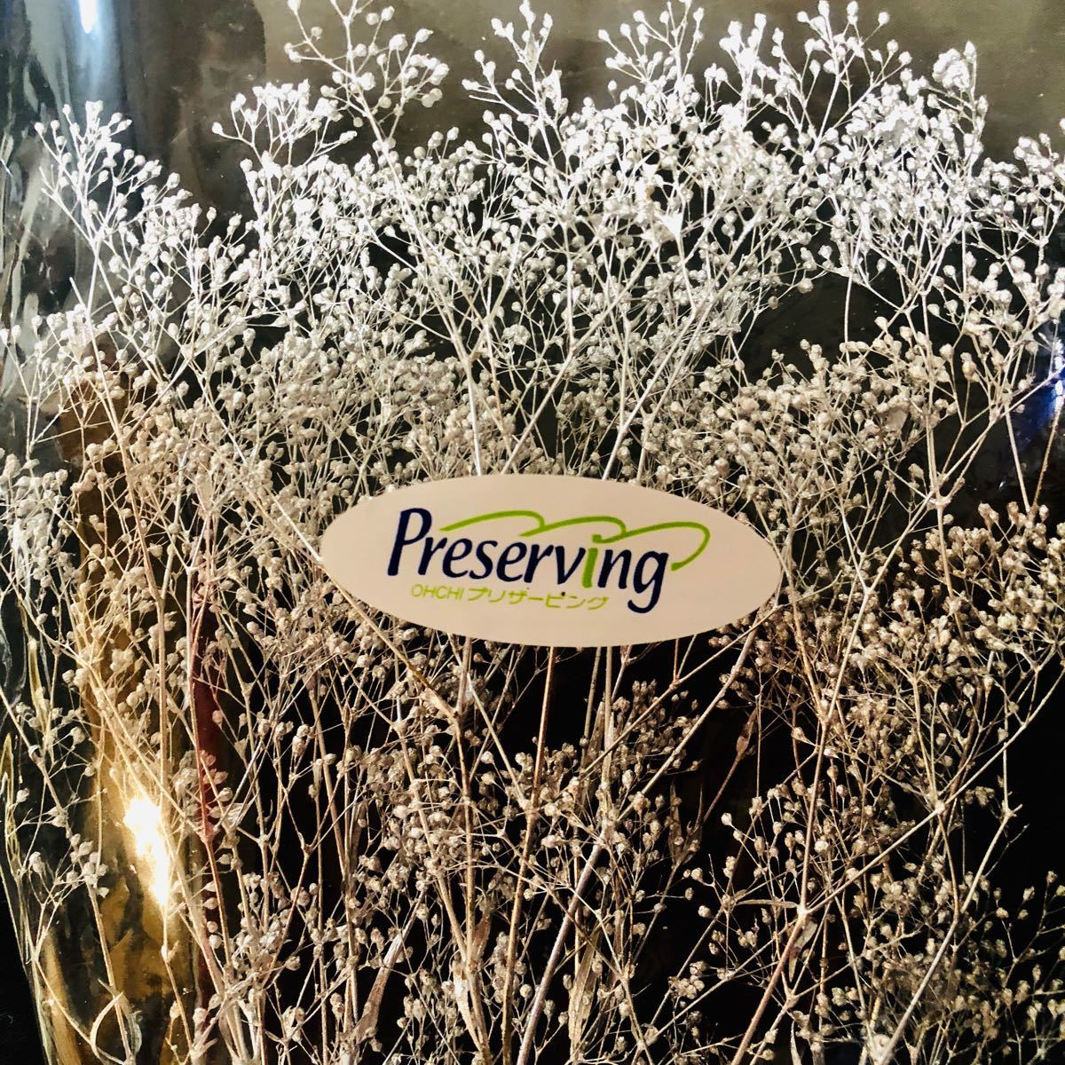 かすみ草 プリザーブドフラワー ハーバリウム花材 大地農園