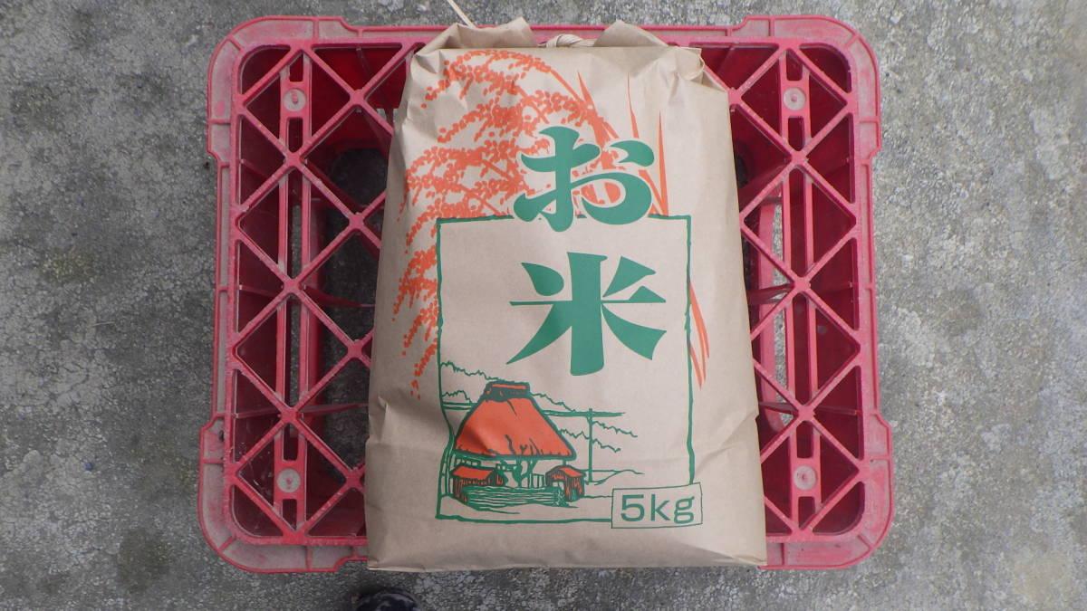 ☆宮城県産 発芽玄米 金のいぶき 令和2年度産 玄米 4.5kg☆_画像4