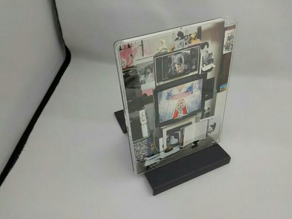 インサイド・ビョーク ライブグッズの画像