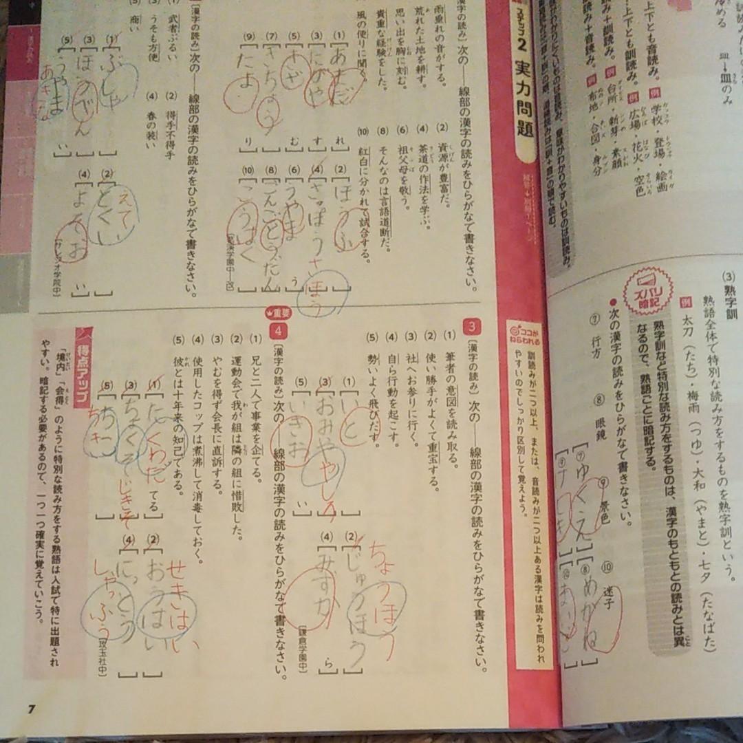 中学入試国語 問題集 過去問題集 受験研究社 中学受験 過去 国語 模試