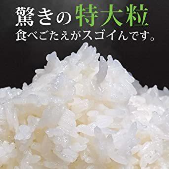 10kg 【精米 無洗米】 雪若丸 10kg (5kgx2袋) 山形県産 新米 令和2年産_画像4