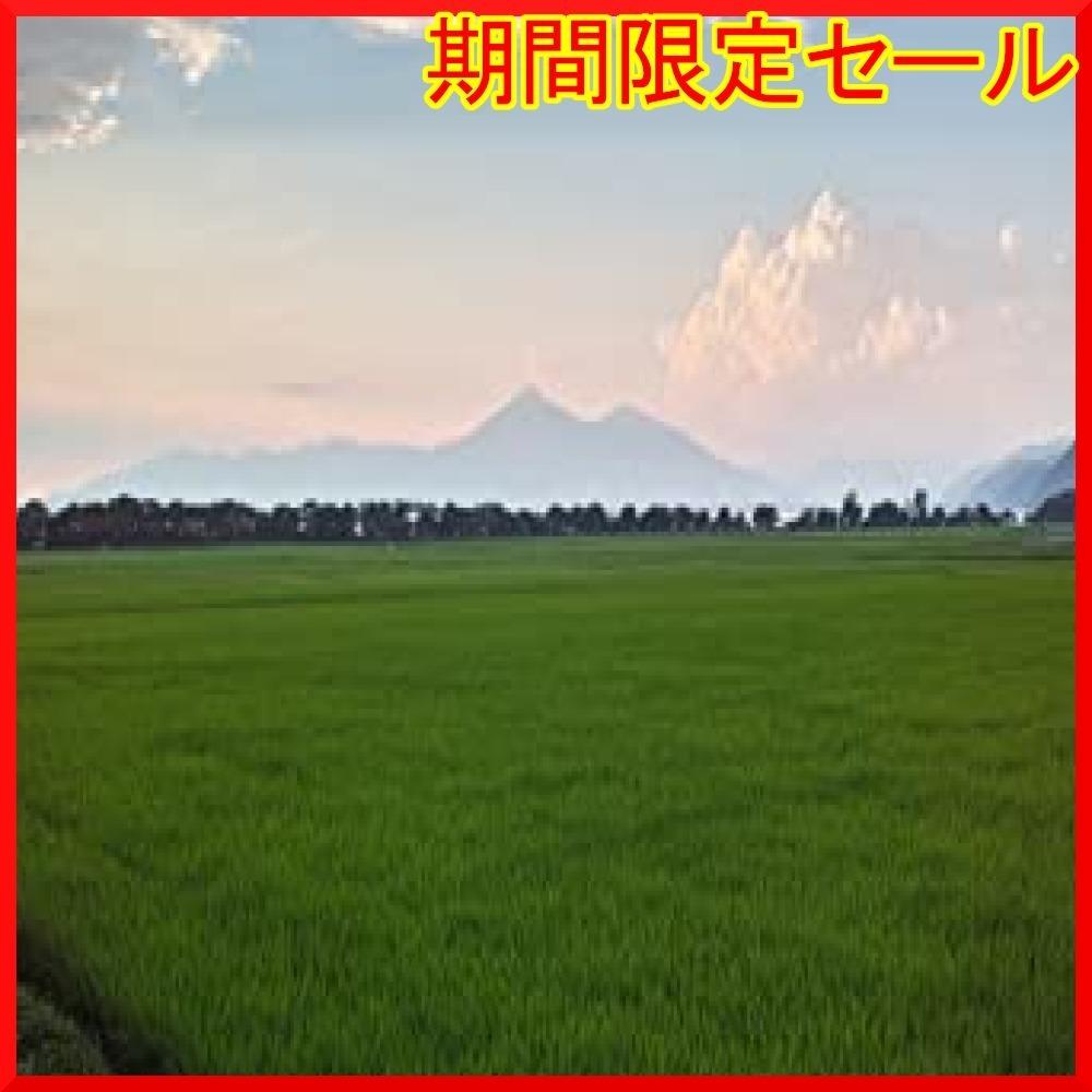 【精米】 福島県産 白米 GKKu8 白米2kg コシヒカリ 2kg 令和2年産_画像4
