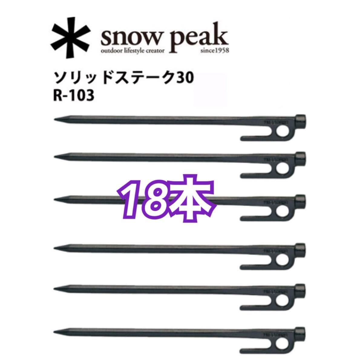 スノーピーク ペグ ソリッド ステーク 30 R-103  18本