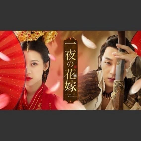 中国ドラマ  一夜の花嫁 Pirates of Destiny  全話 Blu-ray