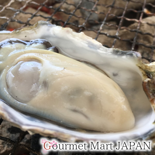 【グルメマートJAPAN】産地直送 北海道厚岸産 殻付き生牡蠣 カキえもん [2L(90g~130g)] 30個セット_画像6