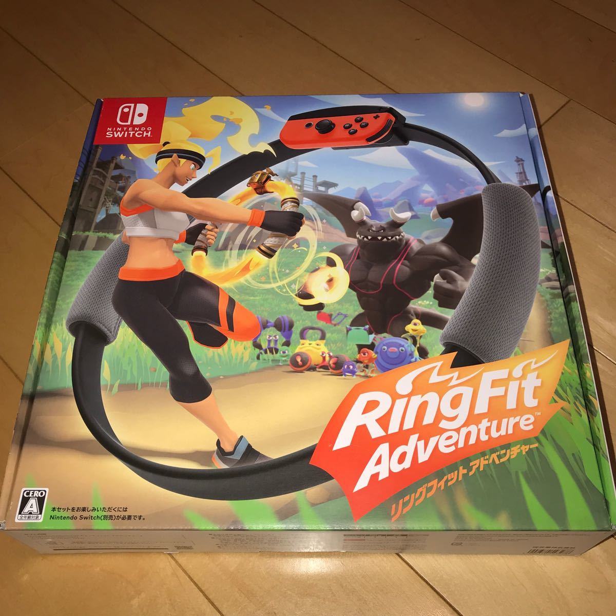 Ring Fit Adventure (リング フィット アドベンチャー)